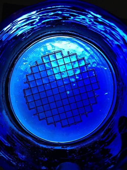 Tartan Vases blue