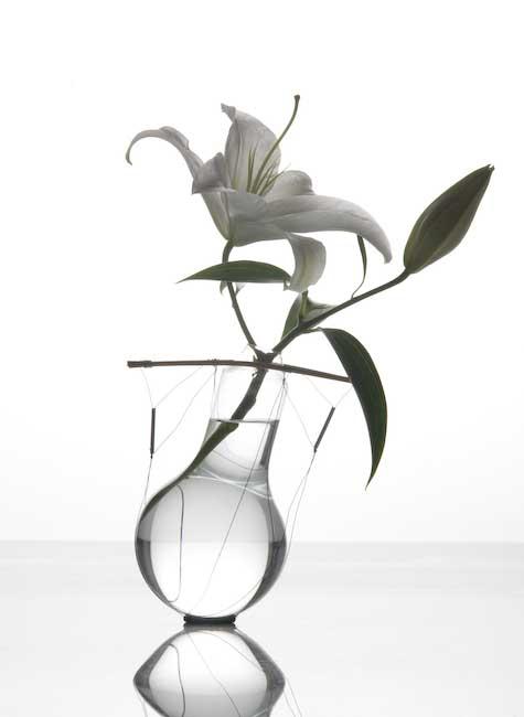 &#8220;Bulbi&#8221;<br/>vasi in vetro, metallo, bambù<br/>autoproduzione (1992/2002)